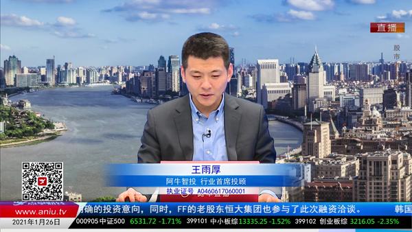 王雨厚:大浪淘沙 大市值优质科技股强者恒强
