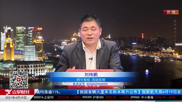 刘伟鹏:风电和光伏发电潜力可观
