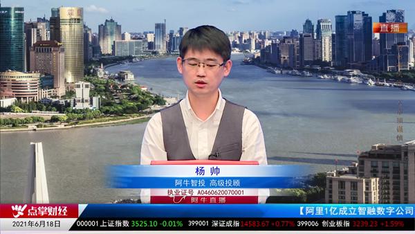 杨帅:中报环节周期品种仍有大舞台!