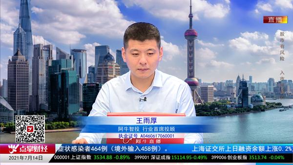 王雨厚:保险板块存在谜题
