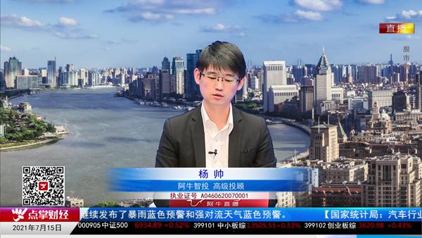 杨帅:新能源是主线 券商下跌空间不大