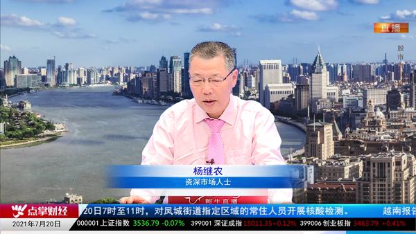 杨继农:下半年震荡回升