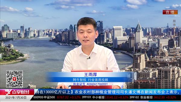 王雨厚:基金经理有优势