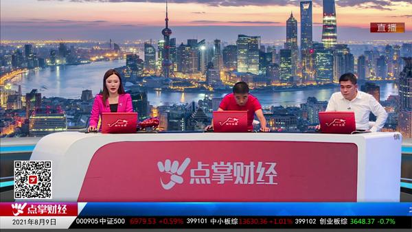 刘伟鹏:新能源车位置偏高 传统汽车或将迎来机会