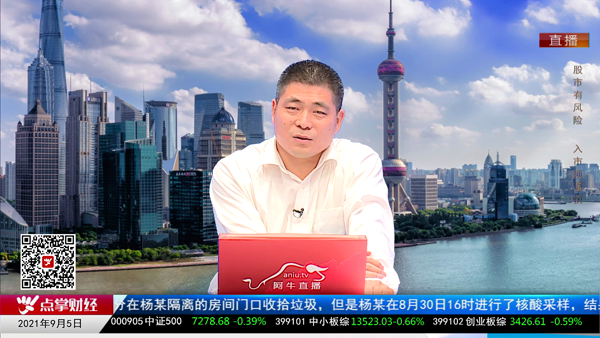 刘伟鹏:蓝筹择时策略 五大方向网罗机会