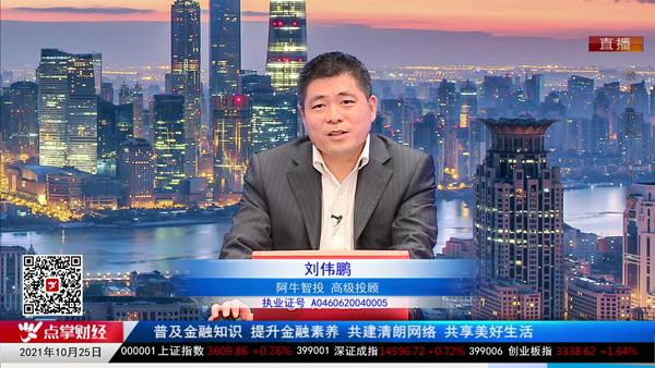 刘伟鹏:做个股看中证,做指数看人民币